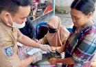 400 Dosis Vaksin Disebar Untuk Cegah Penularan Rabies