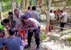 Terjatuh Saat Pangkas Pohon Durian, Warga Padang Lebar Meninggal Di Tempat